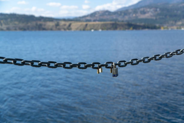 Locks on a Chain stock photo