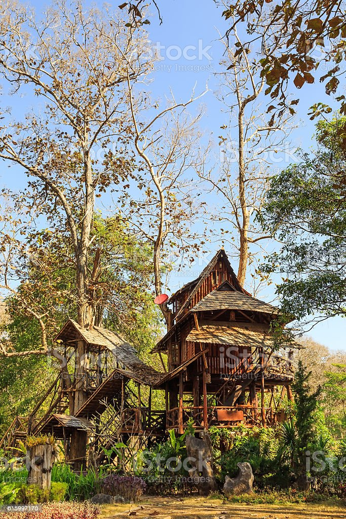 Lodging treehouse at Mae Chaem stock photo