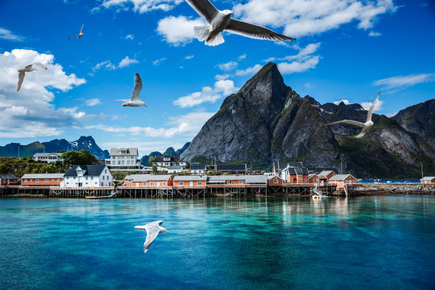 Lofoten archipelago islands islands Norway Lofoten islands is an archipelago in the county of Nordland, Norway. Is known for a distinctive scenery with dramatic mountains and peaks, open sea and sheltered bays, beaches and untouched lands. lofoten stock pictures, royalty-free photos & images