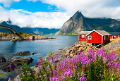 Landscape with red fisherman houses on Lofoten islands, Norway