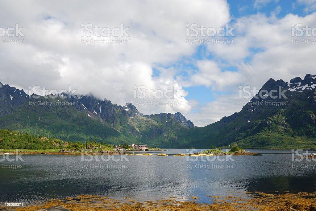 Lofoten islands in summer. stock photo