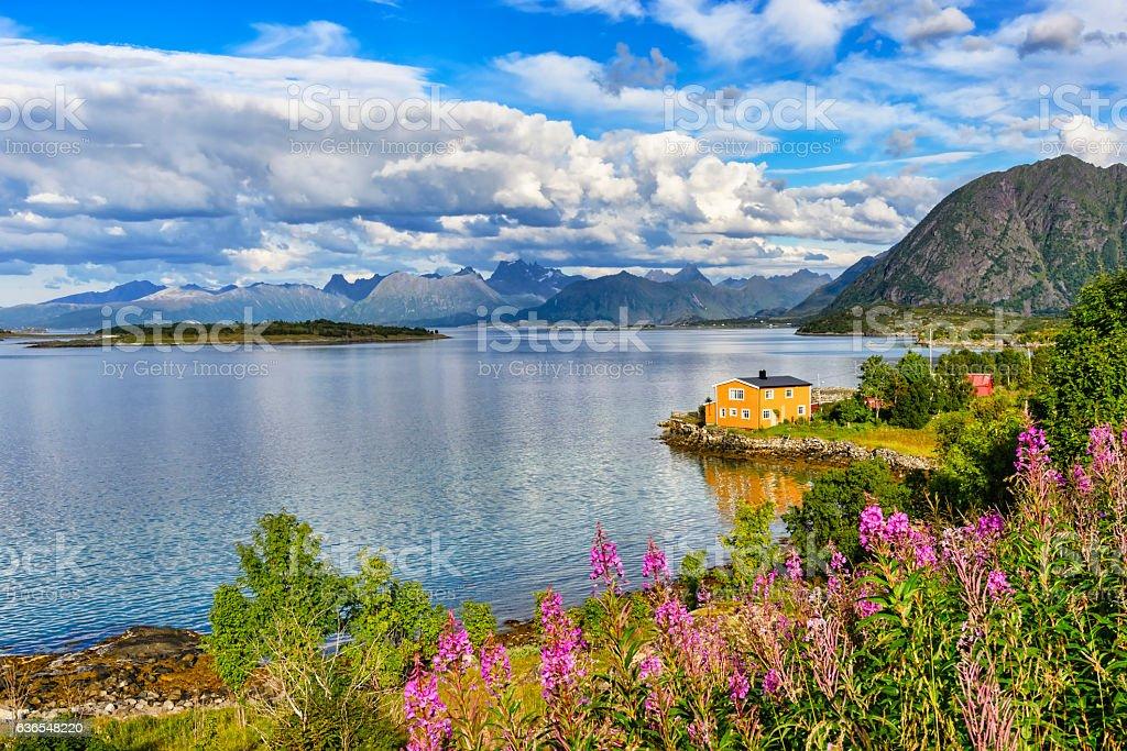Lofoten islands landscape, Norway. stock photo