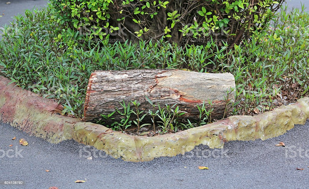 log bench style in the garden stock photo