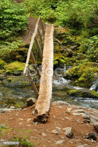 istock Log Bridge Over Stream 182669809