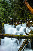 A log bridge in front of a waterfall