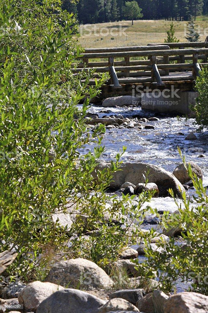 Log Bridge royalty-free stock photo