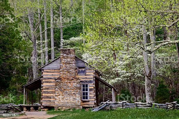 Photo of log cabin in spring