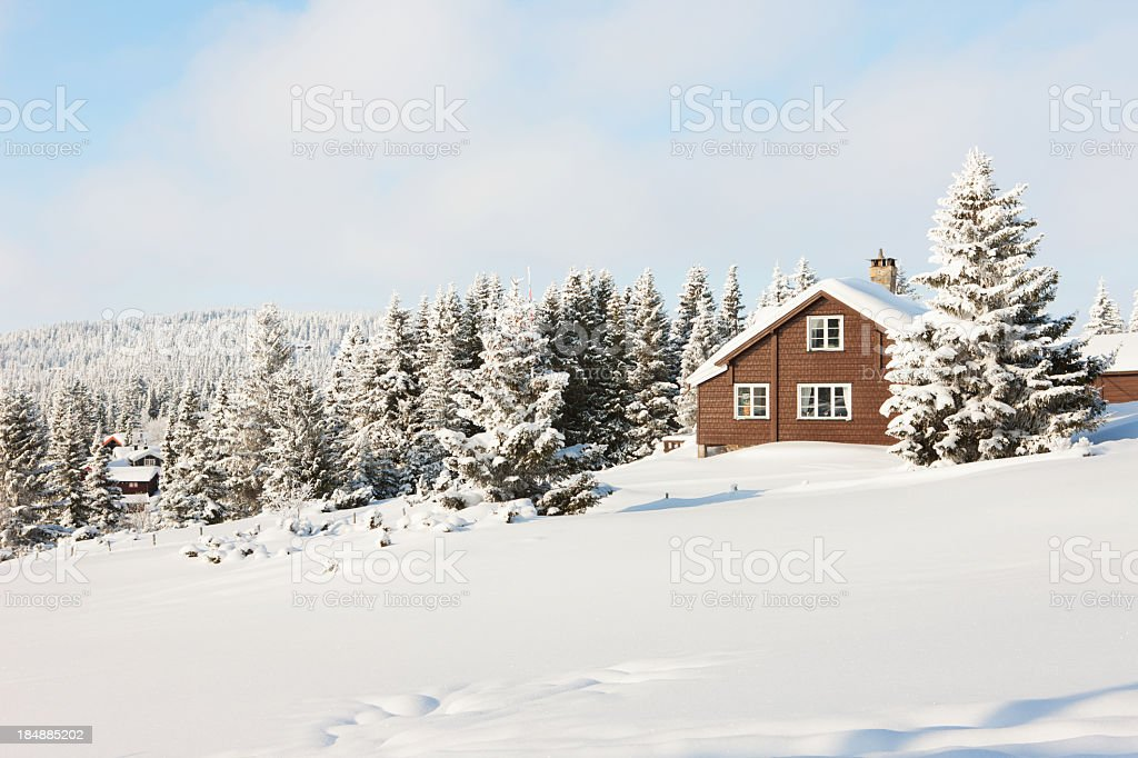 Log cabin in the woods stock photo