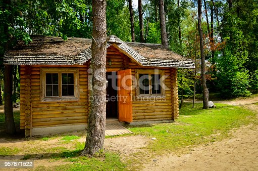 A little rustic log cabin in the woods with open door in sunny day