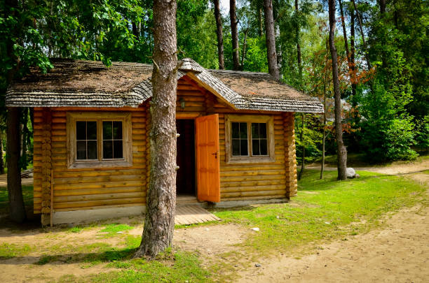 Log cabin in woods A little rustic log cabin in the woods with open door in sunny day passenger cabin stock pictures, royalty-free photos & images