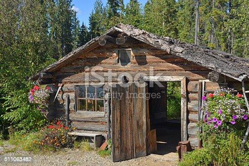 Old, log cabin in a forest of Alaska.