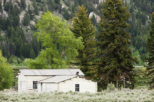 blockhütte wildnis homestead - own wilson stock-fotos und bilder