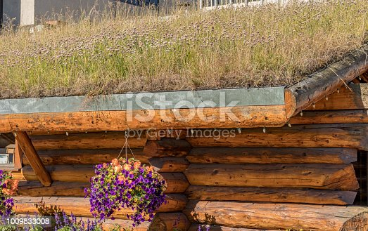 Log Cabin with a living roof in Anchorage, Alaska, USA in summertime.
