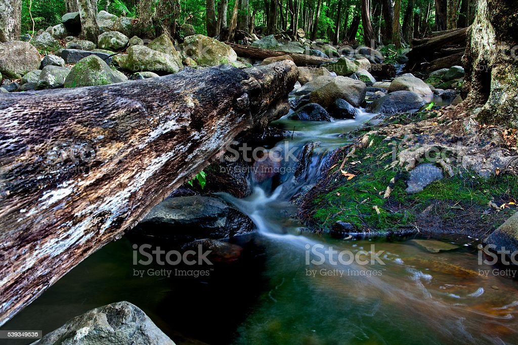 Log Diverting the Stream stock photo