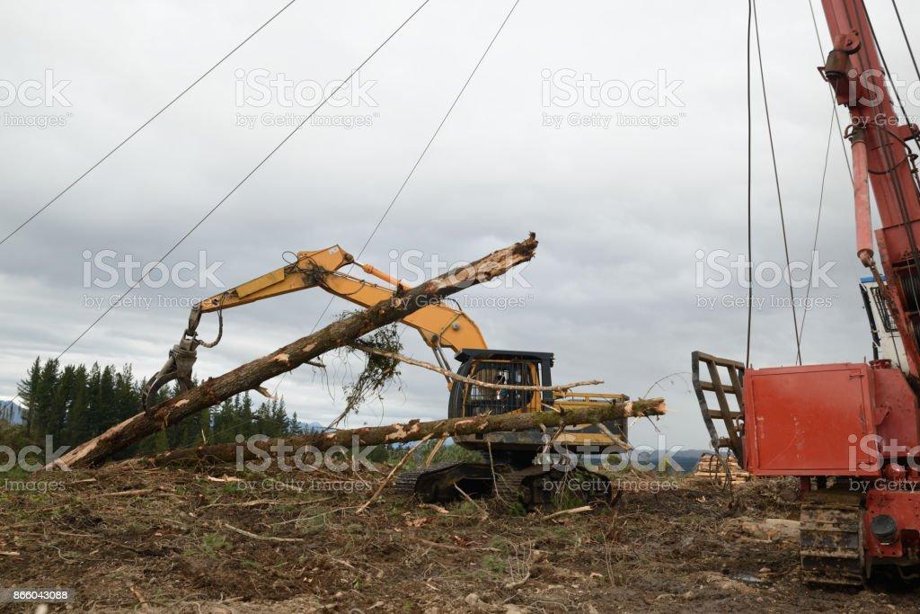 log hauling stock photo