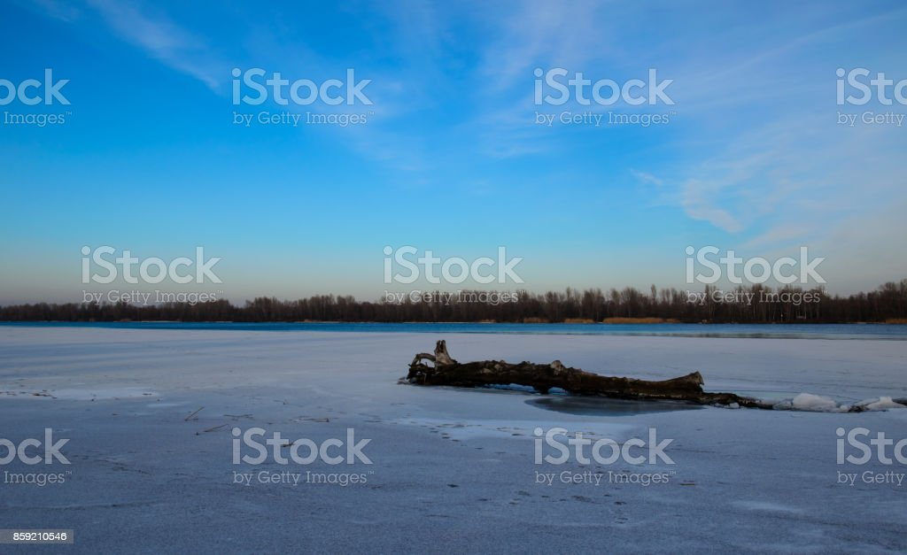 Log on a snow stock photo