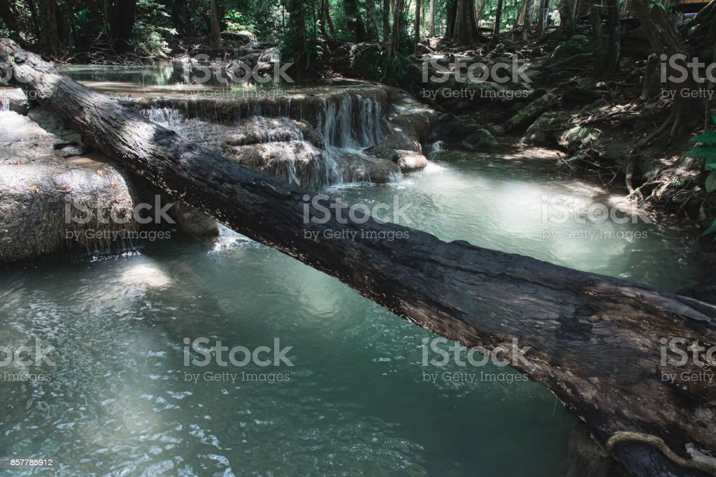 Log Over Turquoise Water in Erawan National Park, Thailand stock photo