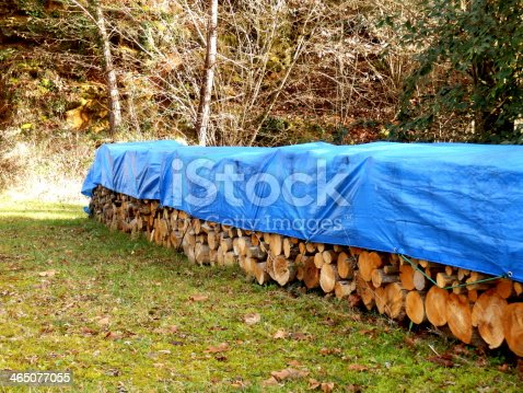 istock Log pile in the woods covered with blue tarp 465077055