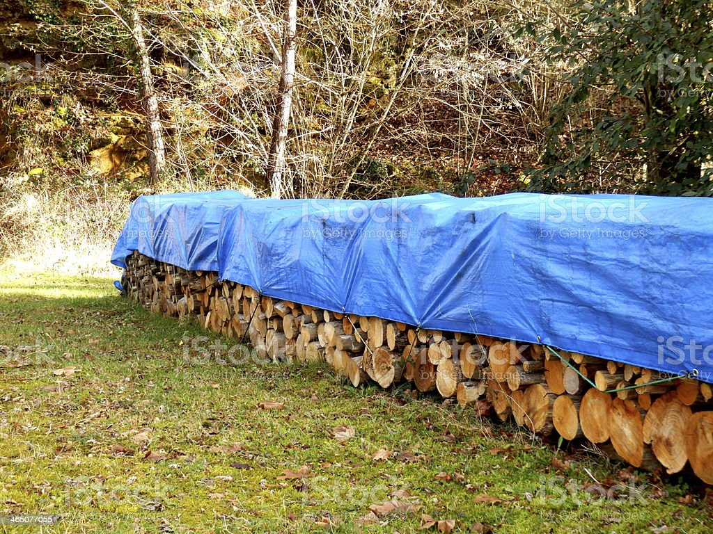Log pile in the woods covered with blue tarp stock photo