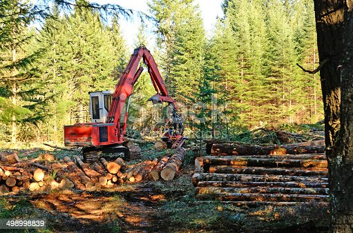 Log processor on a small flat woodland site landing