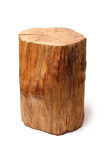 log  Wood – zdjęcie