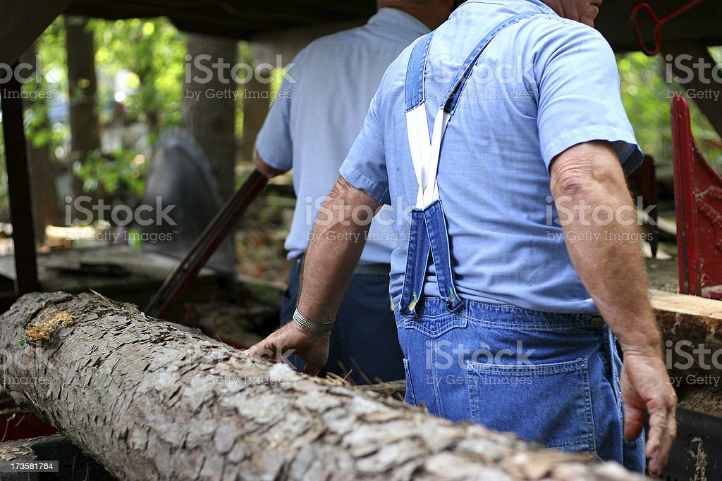 Loggers 2 royalty-free stock photo