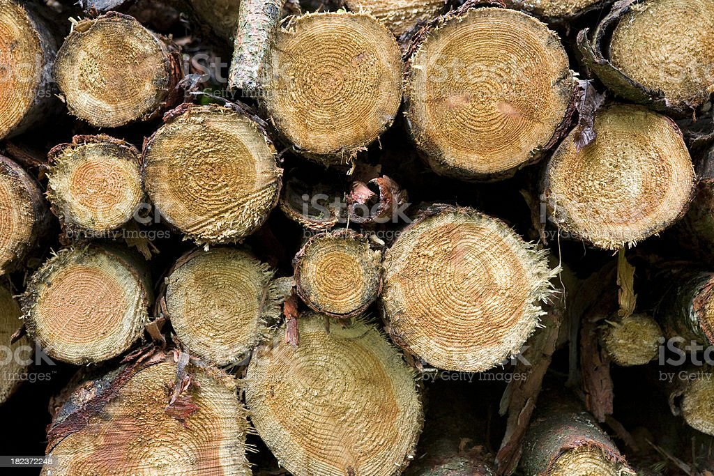 Logging Abstract royalty-free stock photo