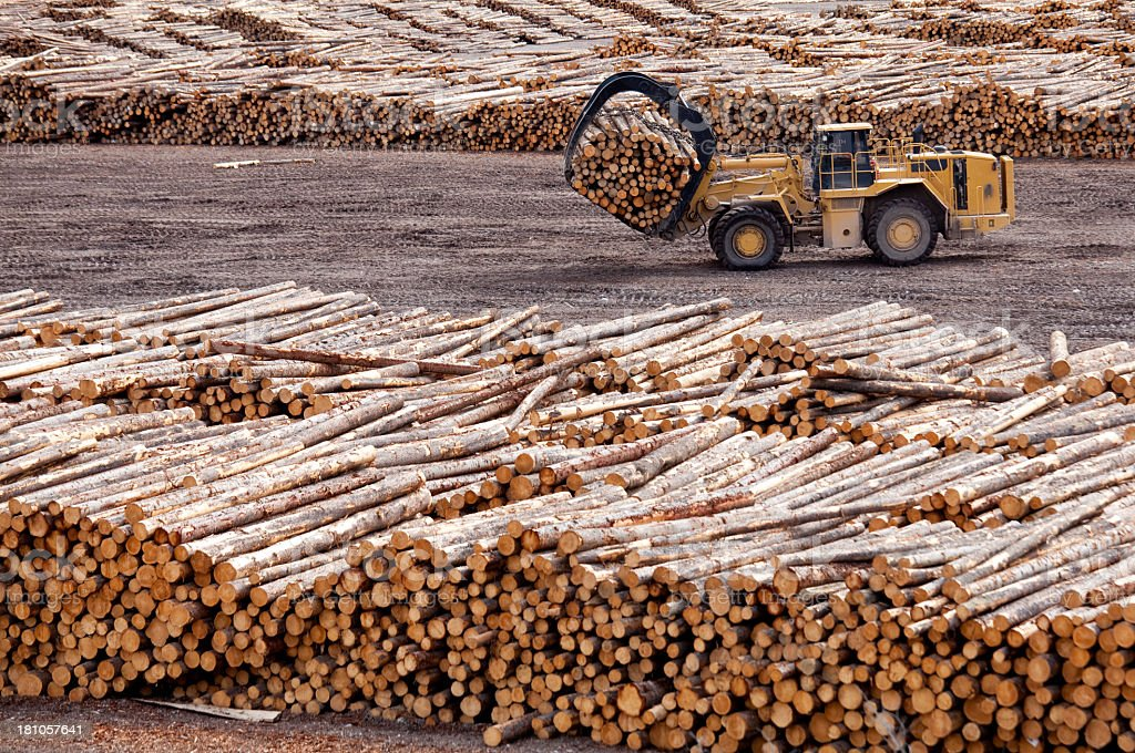 Logging and Forestry Industry in British Columbia stock photo