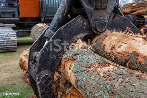 Heavy machinery grabs several logs to load onto a truck or shift on a logging site in Canterbury, New Zealand