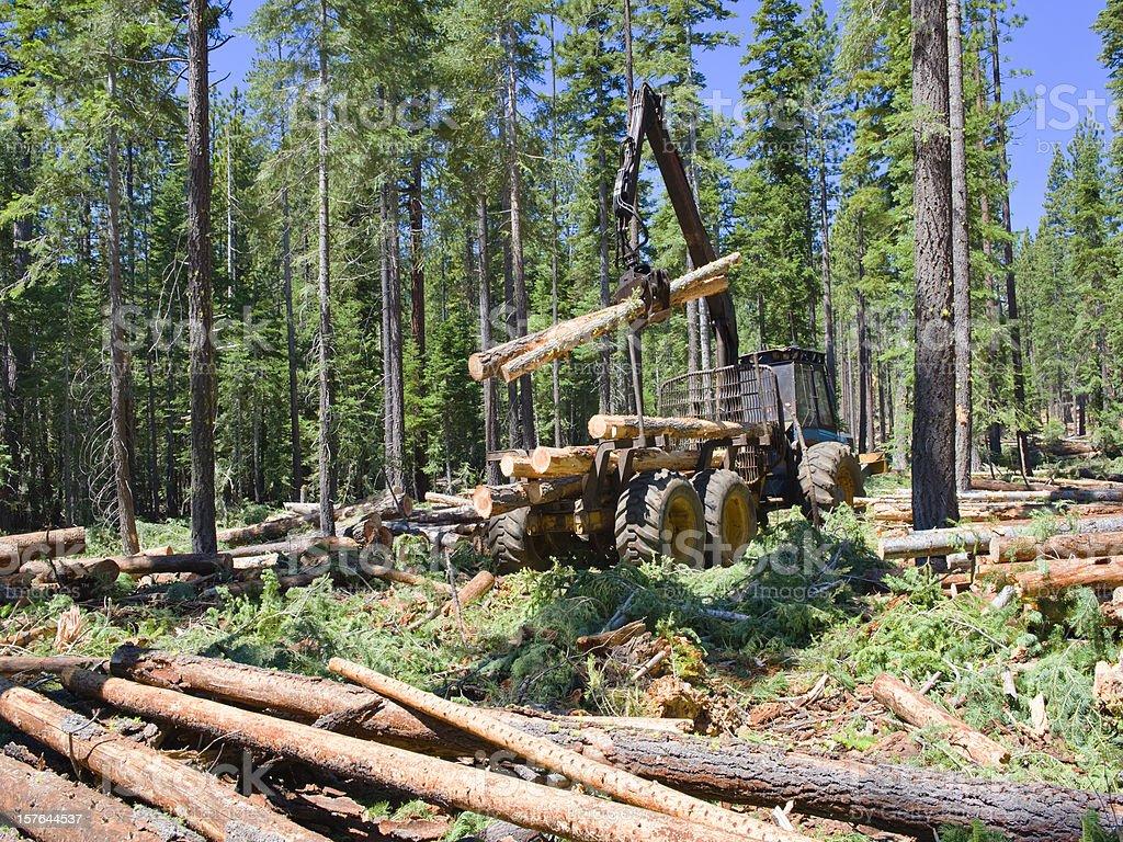 Logging Loader stock photo