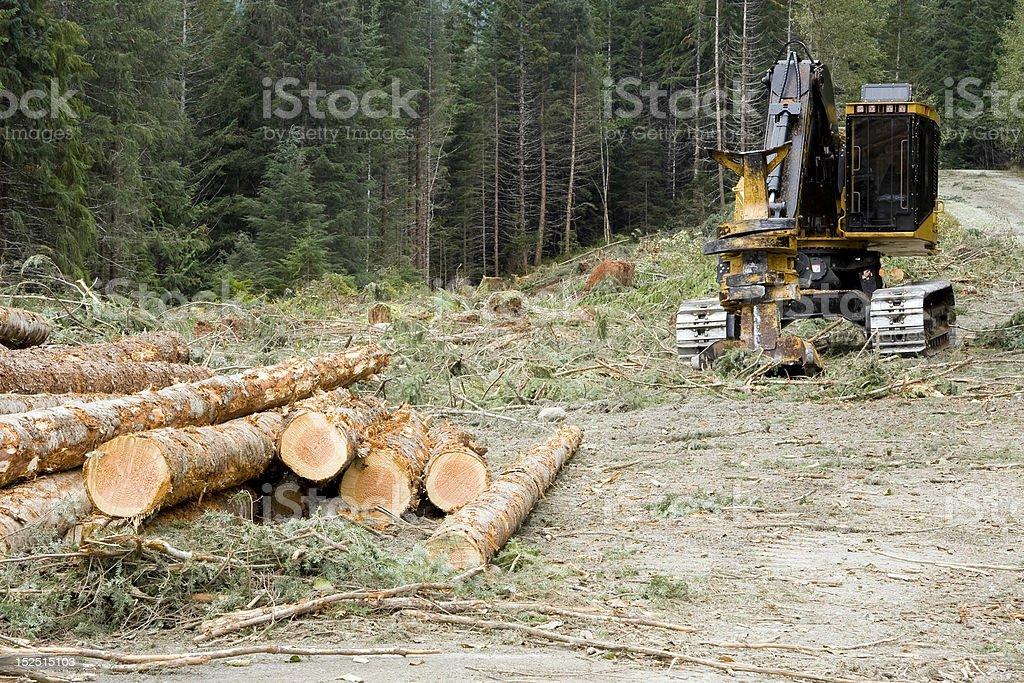 Logging Operation royalty-free stock photo