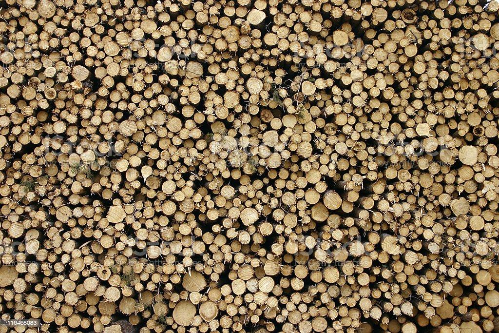 Logging royalty-free stock photo