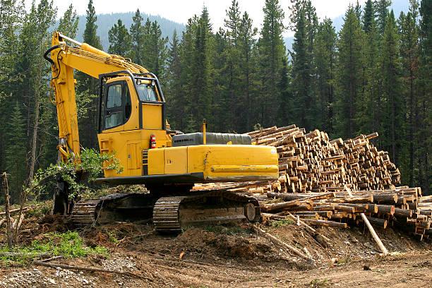 logging # 5 - logging equipment stock photos and pictures