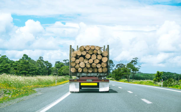Logging truck driving on State Highway One in Northland, North Island, New Zealand, NZ stock photo