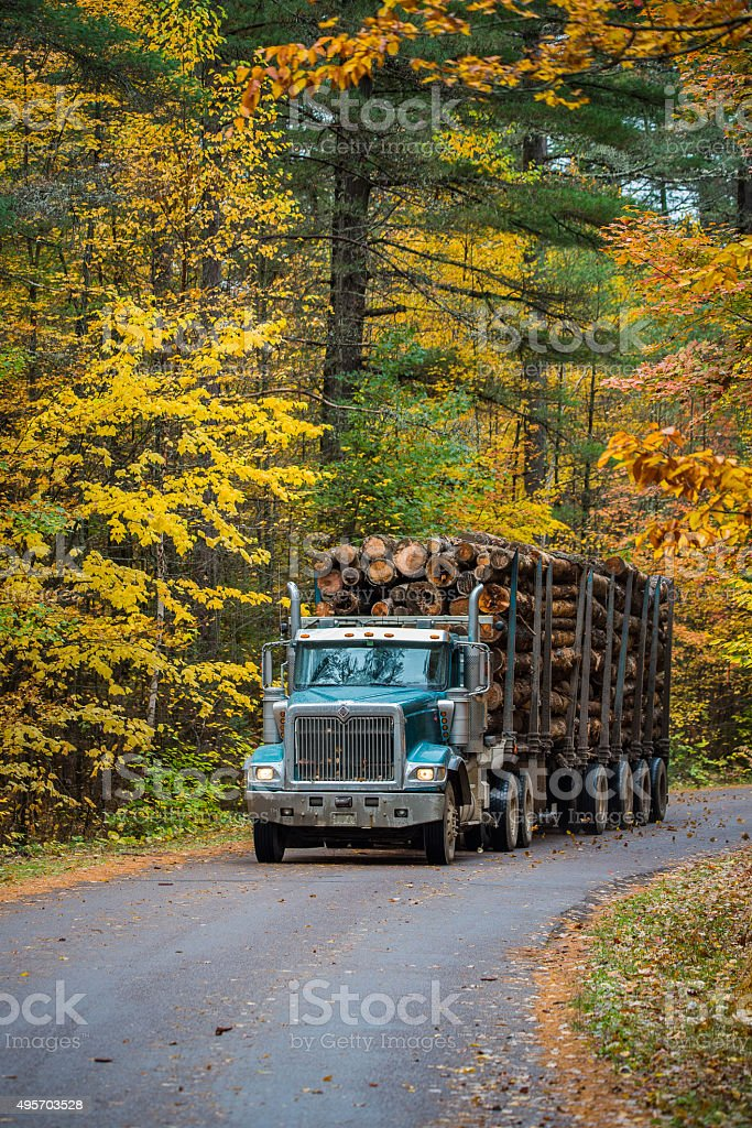 Logging truck hauling its load out of the woods. stock photo