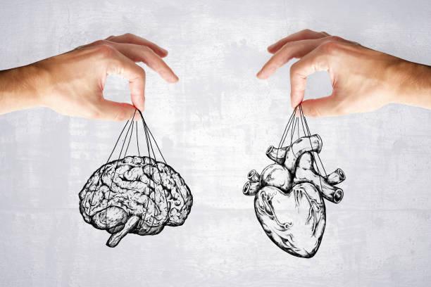 Logik und Gefühl Konzept mit Herz und Hirn – Foto