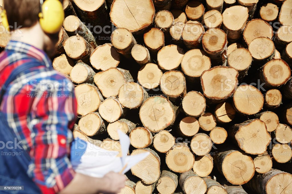 Logs and forester stock photo