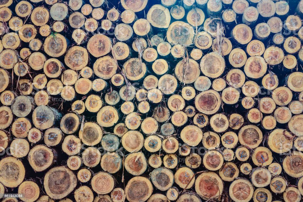 Logs background image stock photo