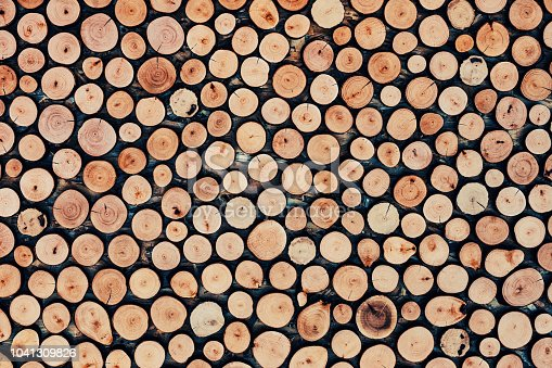 Logs used as decoration on the wall.