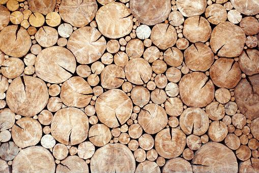 logs birch wall