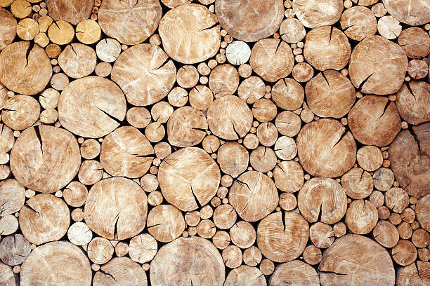 logs birch wall Stacked logs birch wall texture background log stock pictures, royalty-free photos & images