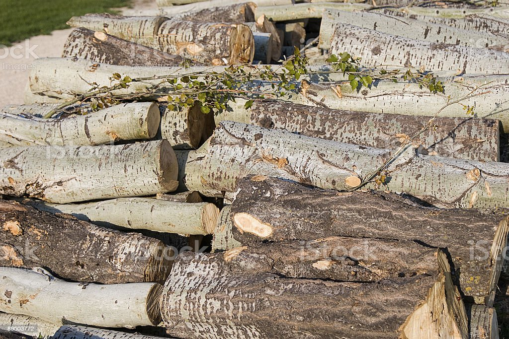 logs for firewood royalty-free stock photo
