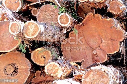 Cut Log backgrounds