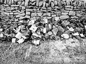 Pile of old logs beside a dry stone wall, in Alston, Cumbria.