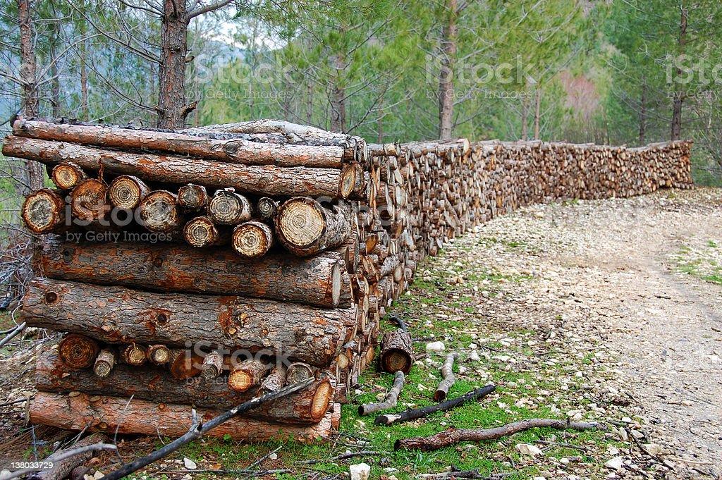 Logs royalty-free stock photo