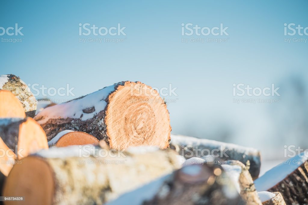 Logs sawn a wood on a background of blue sky. Close up. stock photo