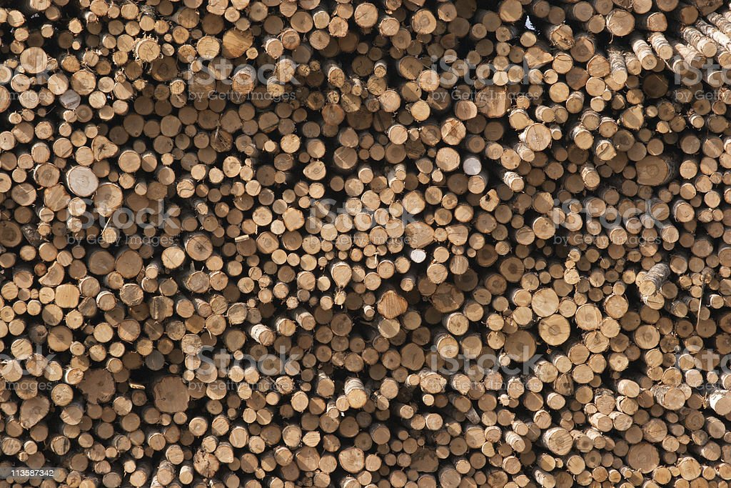 Logs stack royalty-free stock photo