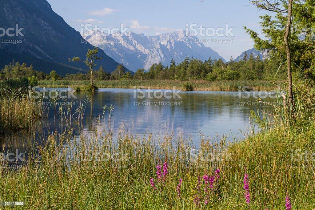 Loisach Valley in Eschenlohe stock photo