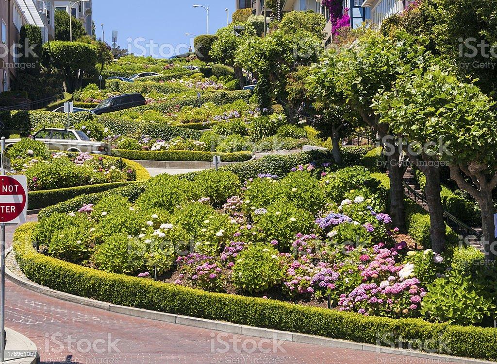 Lombard Street in San Francisco royalty-free stock photo