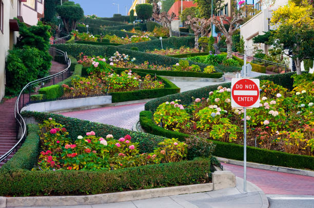 Lombard Street in San Francisco Famous street in San Francisco, Lombard Street san francisco california stock pictures, royalty-free photos & images